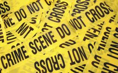 Book Review: Three Criminal Justice Novels
