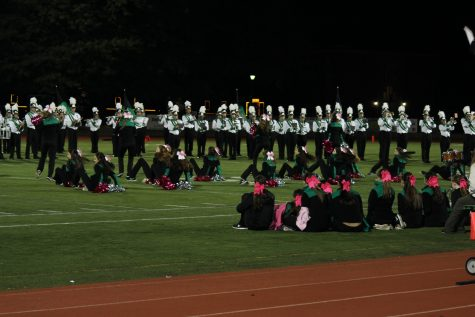 Poms performing with their pink pom poms and bows at half time.