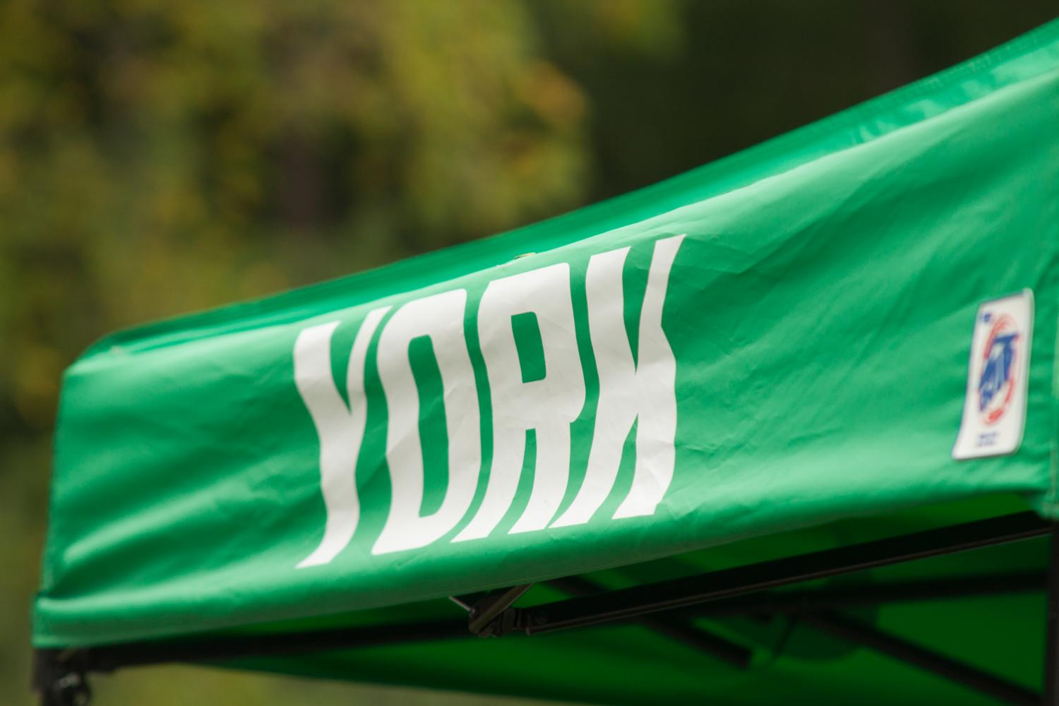 York has high hopes for this cross country season