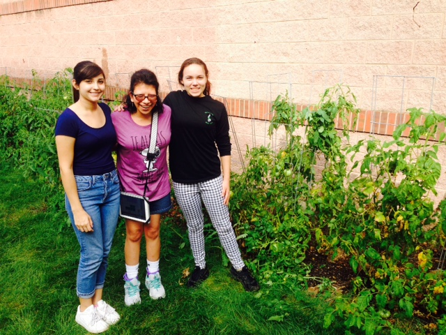 Garden Club donates 50 pounds of produce for Yorkfield Food Pantry