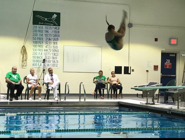 Brigitte Kammerdiener doing a back dive pike.