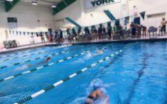 Girls swim season is going swimmingly