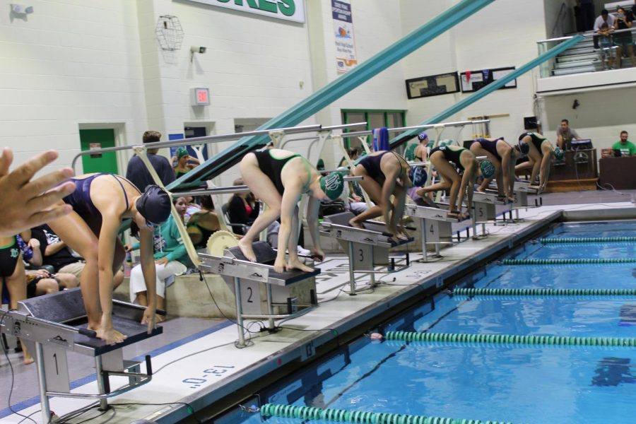 York swimmers prepare to swim 500 yards of freestyle against West Chicago swimmers.
