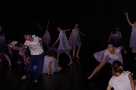 York Dance Company leaps into the new school year