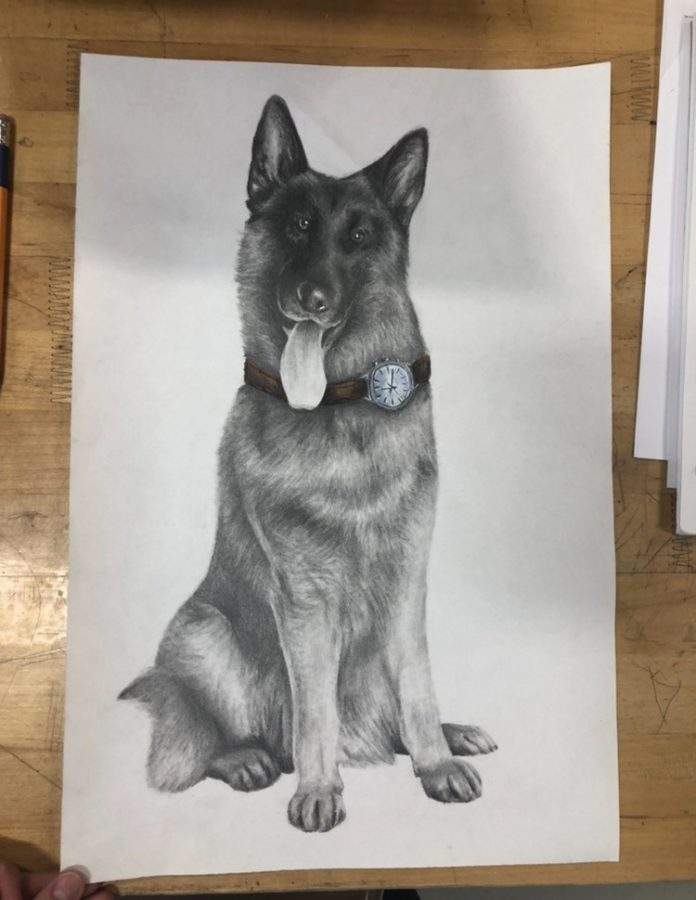 As part of her freshman year drawing class, Ava Eisa drew a variety of animals including a dog which was featured in the art show during her freshman year.