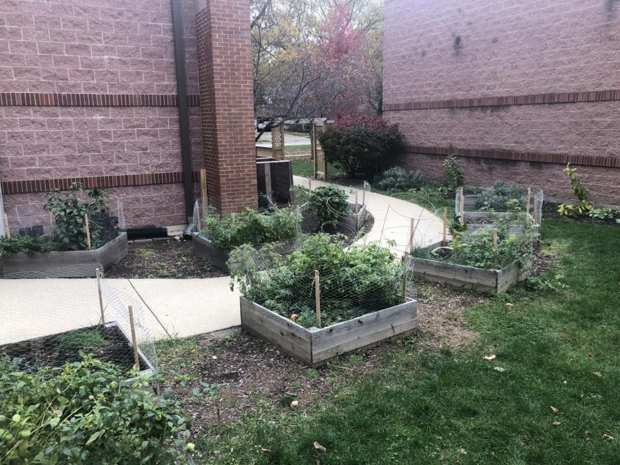 The North Gardens are one of three campus greenspaces maintained by York's Garden Club. With the return to full remote once again, the question of how the gardens will be maintained still remains. Photo by Lucas Freitag