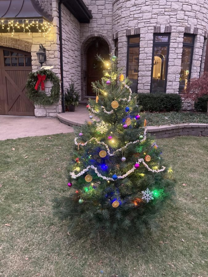 This tree decorated with popcorn string, small ornaments and dried orange staked into a Elmhurst residents front yard. We went for a natural vibe this year for our tree, and it turned out great! sophomore Phoebe Stergios said.
