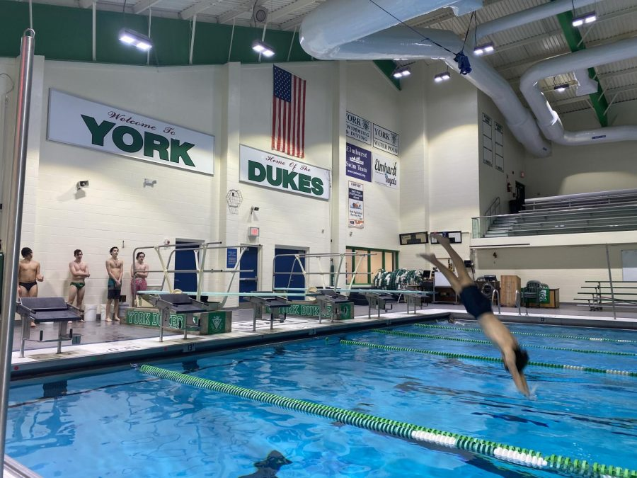 Junior diver Boe Trainer dives into the water at their first day back to practice, after IHSA announced that winter sports will resume session. Dive team is now training for meets and will continue to practice each day to work towards the season they have been wanting.