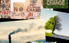 As climate change becomes a more prominent issue, teachers must adjust their styles to inform the future generation of climate change activists.